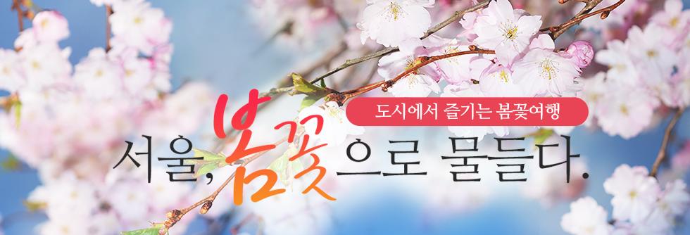 도시에서 즐기는 봄꽃여행