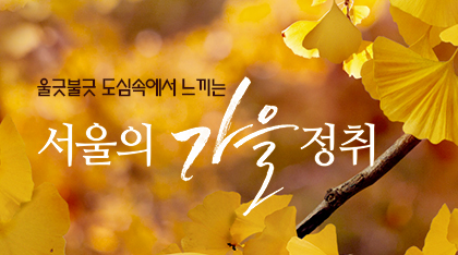 서울의 가을정취