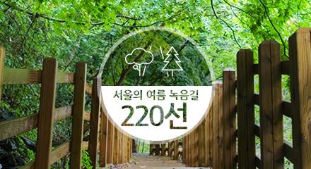 서울의 여름 녹음길 220선