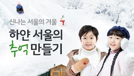 서울의 눈썰매장,스케이트장